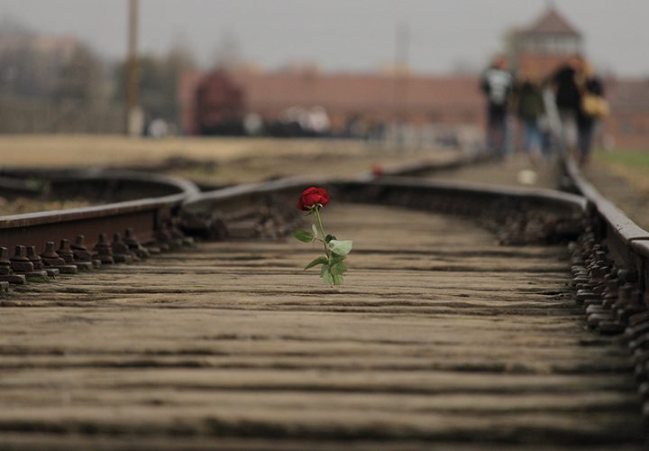 Experiencing Auschwitz; In the Shadow of 'Dark Tourism'