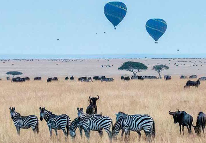 Family Travel in Africa