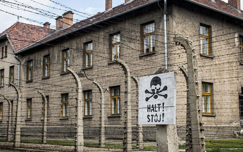 Wire fence in Auschwitz