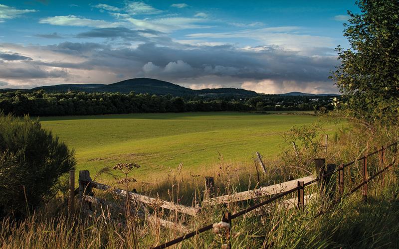 Sunny countryside