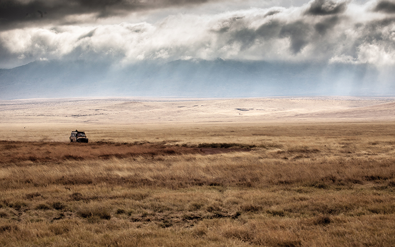 Safari van driving in Africa