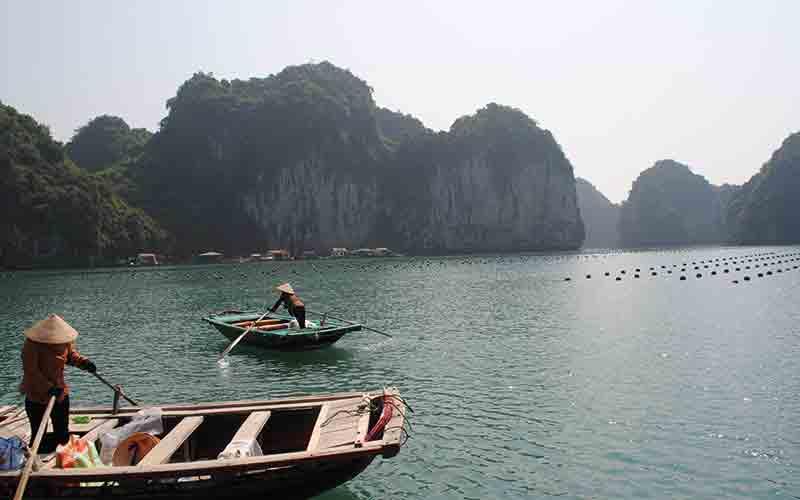 People paddling boats