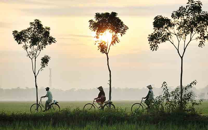 People cycling in the sunset