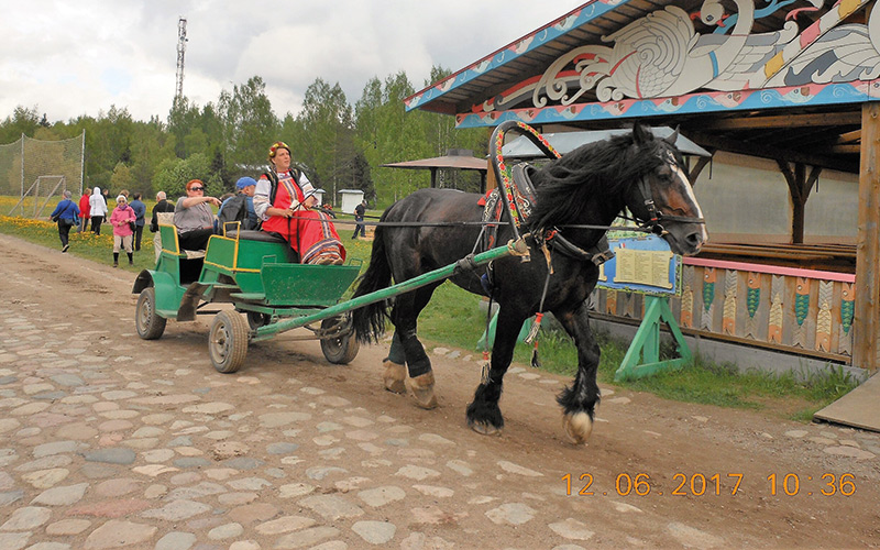 Horse pulling carriage with people on