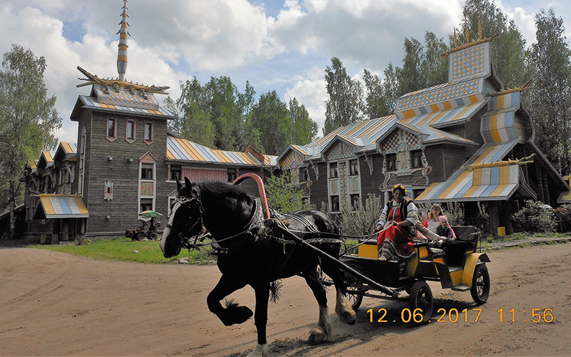 Black horse pulling a carriage