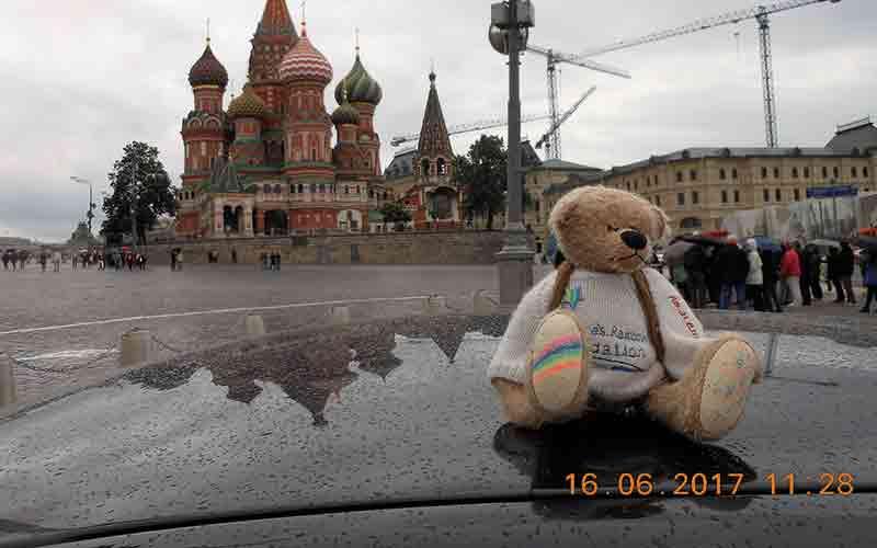 Rainbow Bear on car