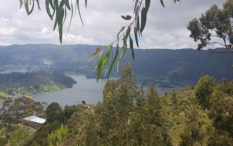 Ethiopian lake and trees