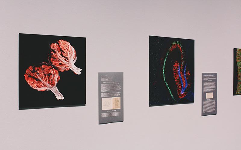 Science museum exhibit