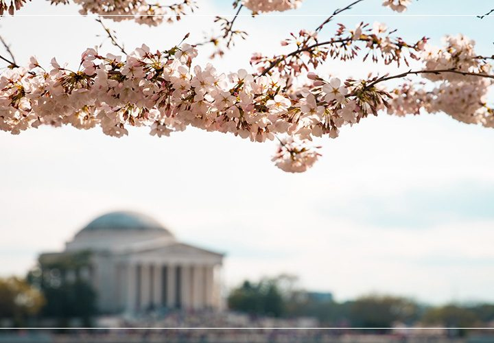 Our Washington Travel Guide