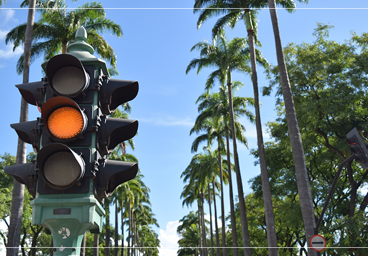 Everything you need to know about the traffic light system